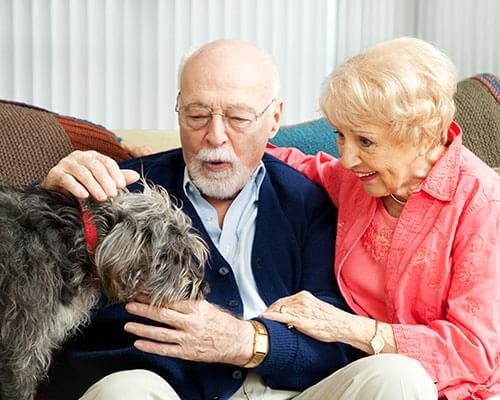 Dementia Caregiver Support in Dallas