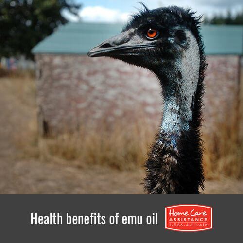 How Seniors Benefit from Using Emu Oil in Dallas, TX