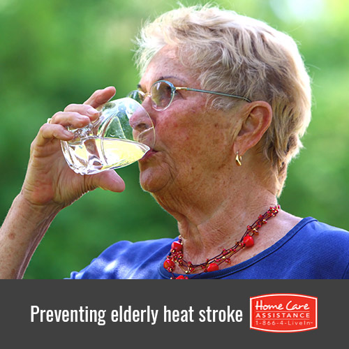 How to Prevent Senior Heat Stroke in Dallas, TX