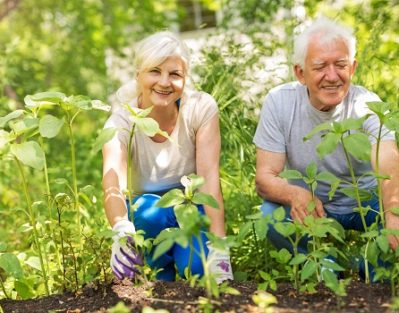 How to Keep a Senior with Alzheimer's Occupied in Dallas, TX