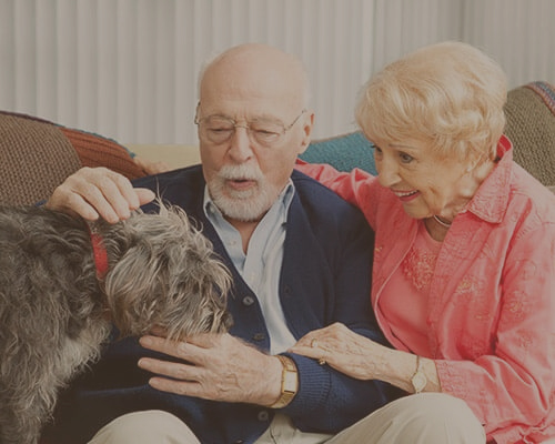 Dementia Home Care Services